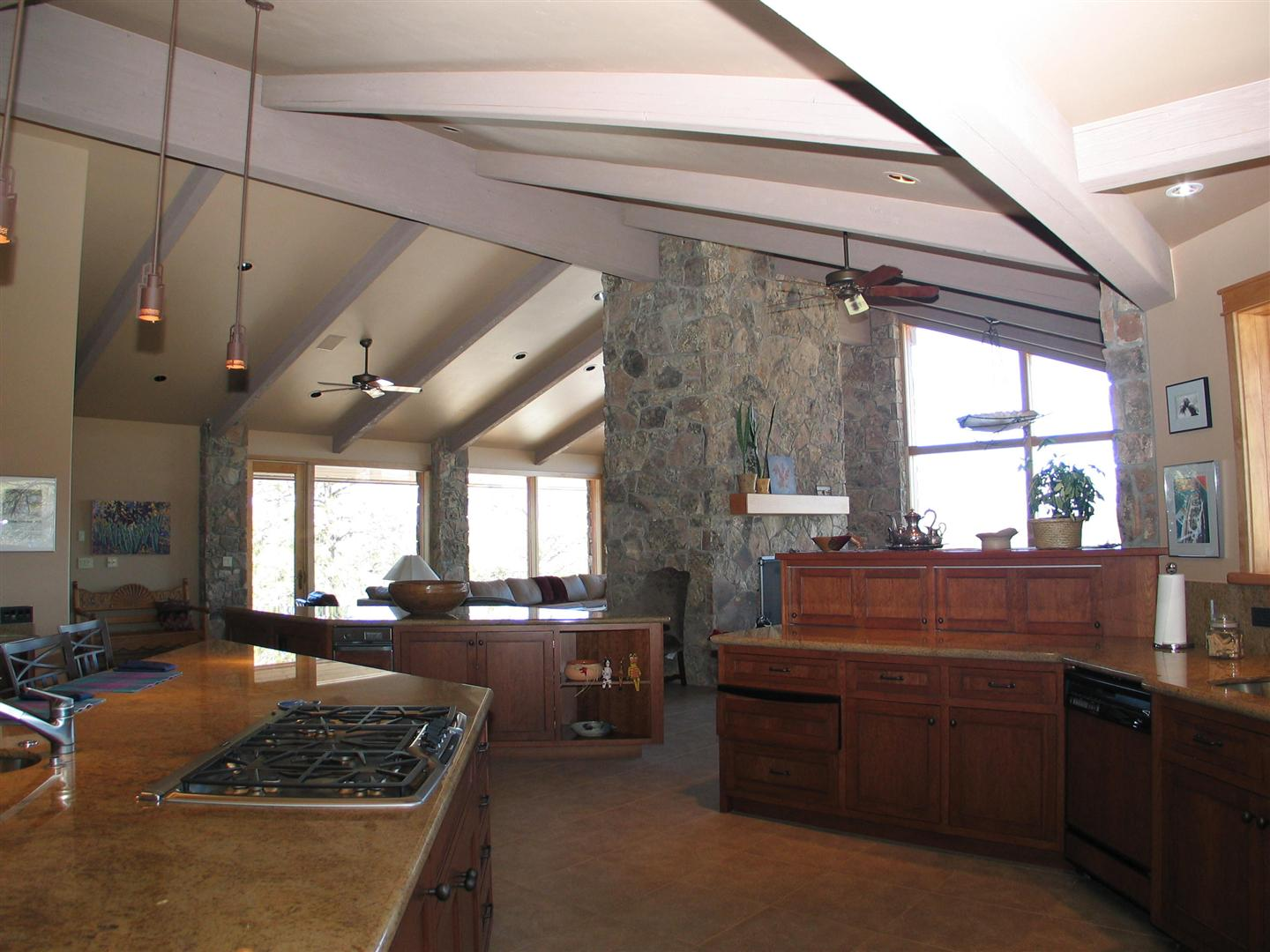 Large Contemporary Kitchen 2